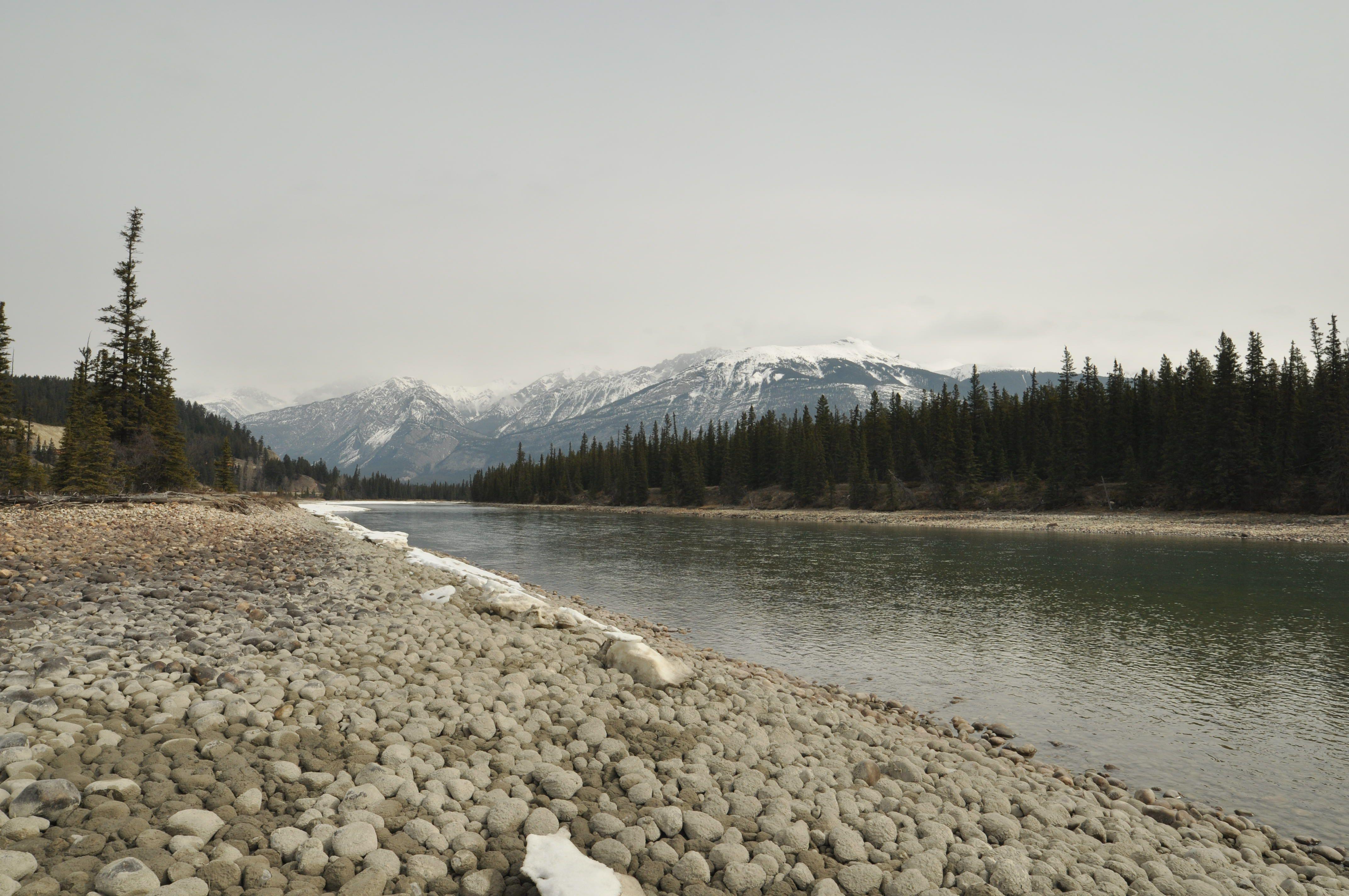 rivierejasper