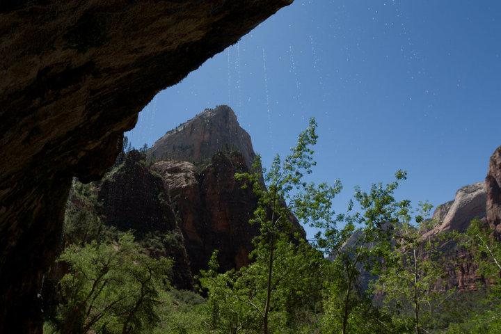 weepingrock