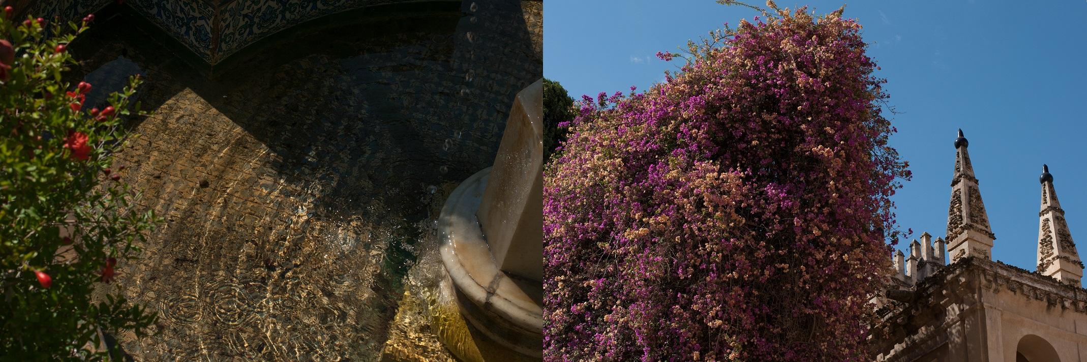 jardins-alcazar
