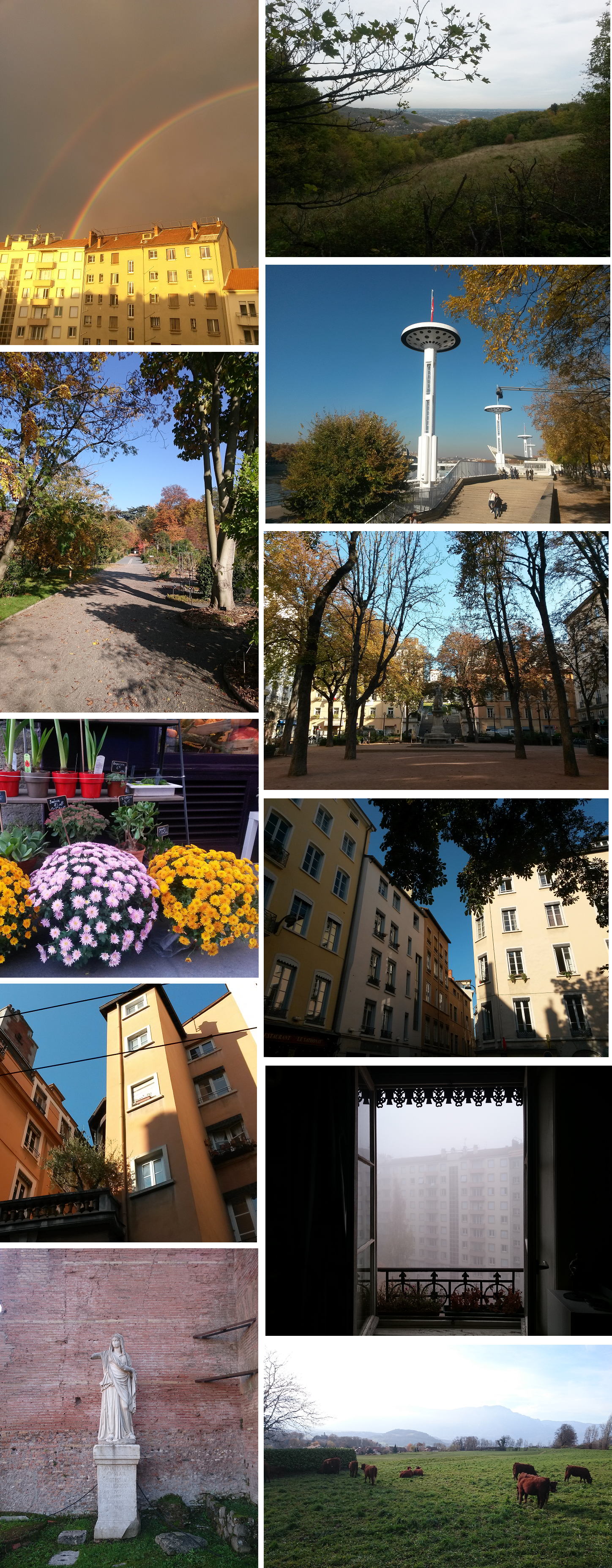 photos-automne2015