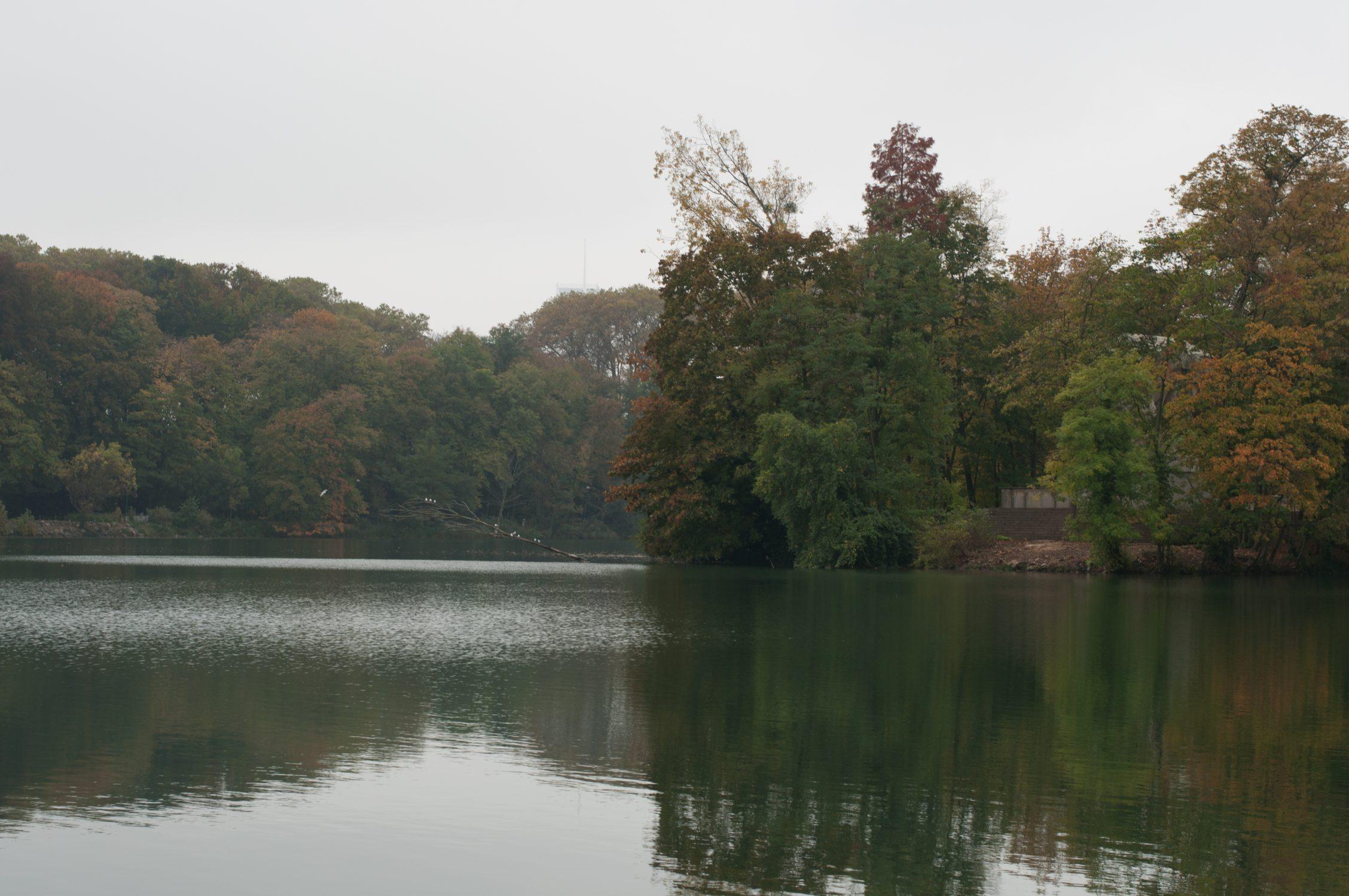 automne2016-lyon-2