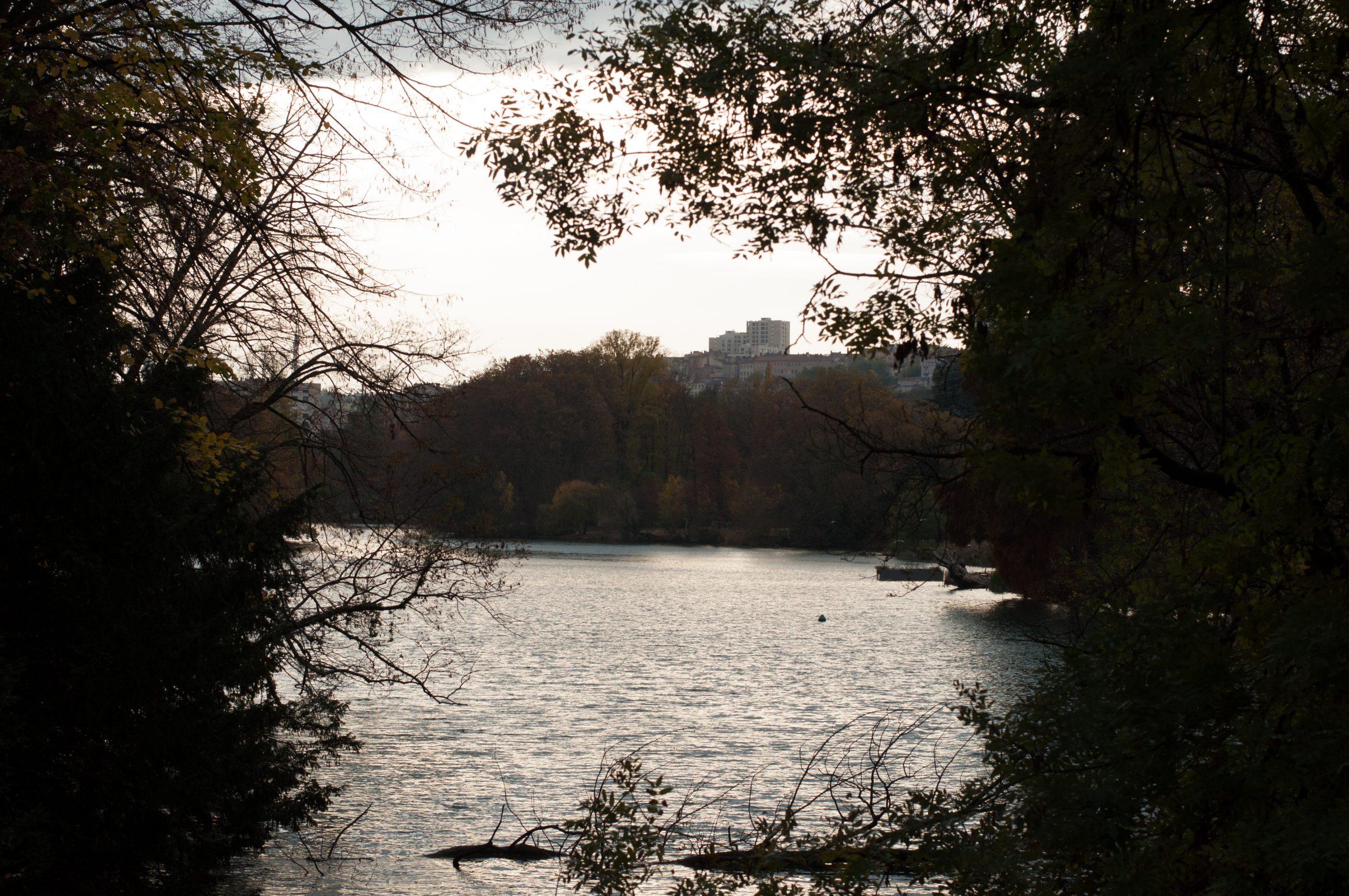 automne2016-lyon-39